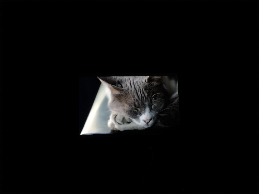 f:id:Fukuneko:20171228125046j:image