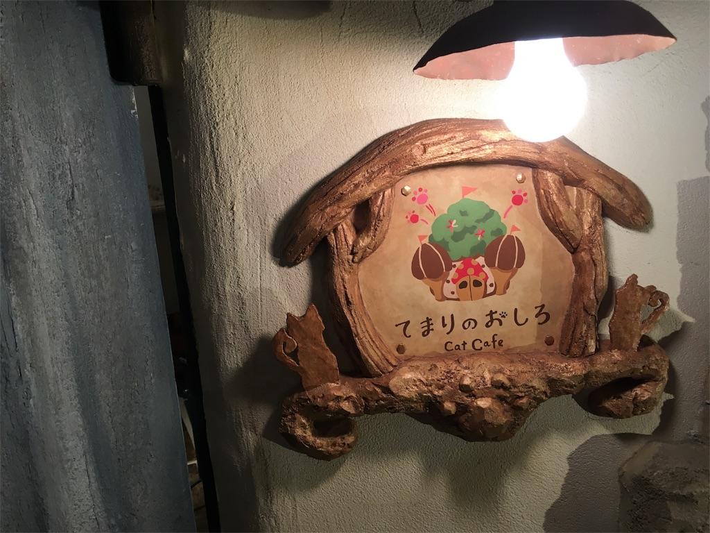 f:id:Fukuneko:20180304205839j:image
