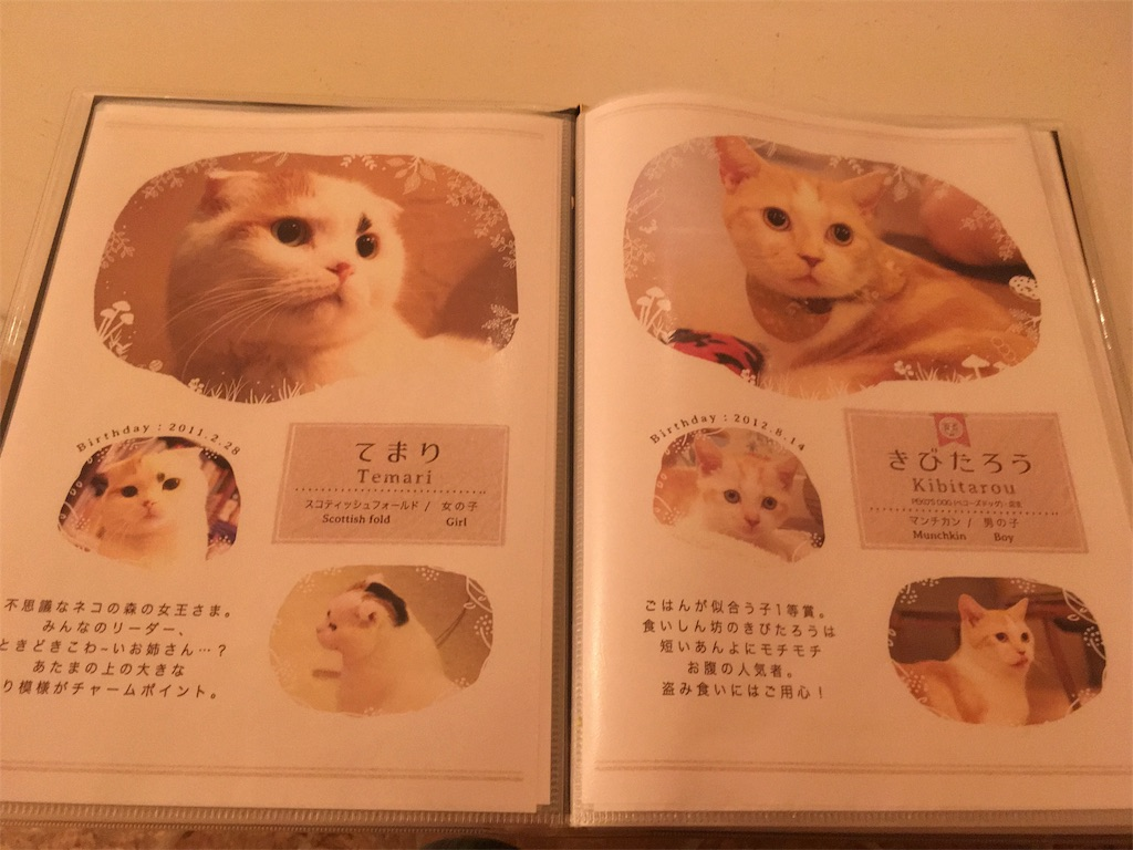 f:id:Fukuneko:20180304205933j:image