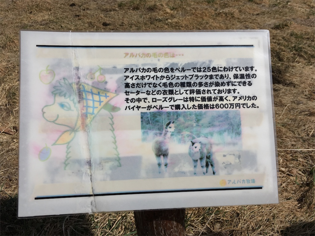 f:id:Fukuneko:20180326011537j:image