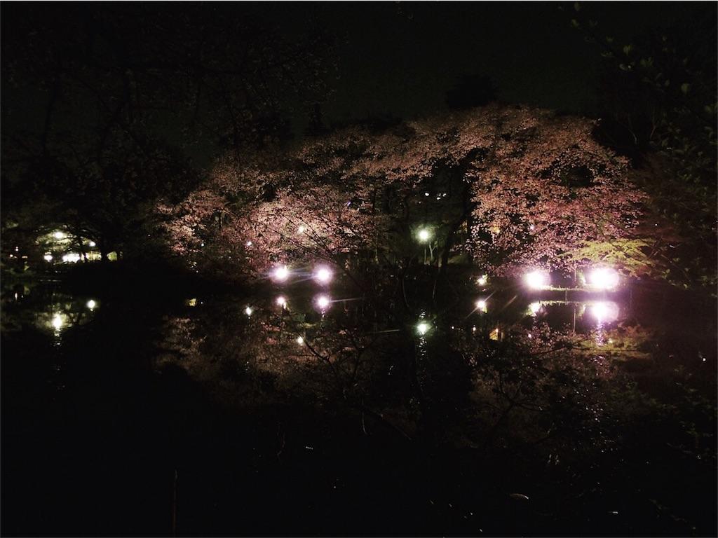 f:id:Fukuneko:20180401175313j:image