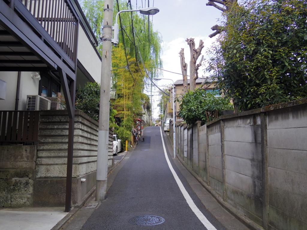 f:id:Fukuneko:20180410215648j:plain