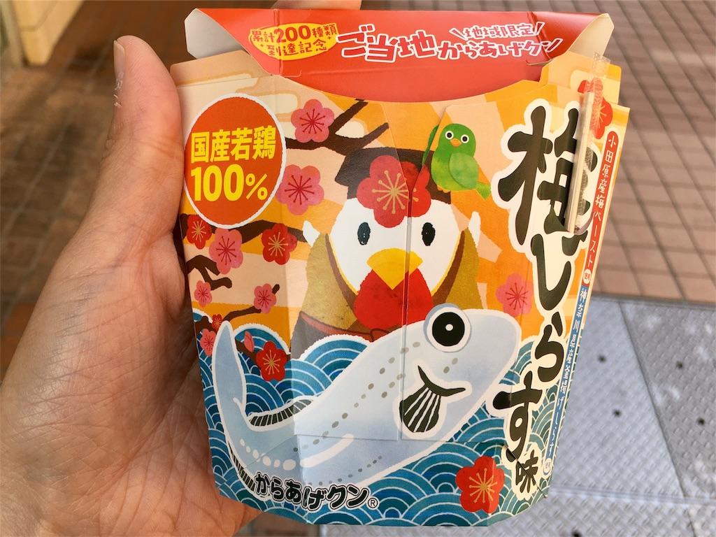 f:id:Fukuneko:20180426214602j:image