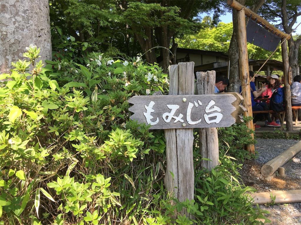 f:id:Fukuneko:20180505215353j:image
