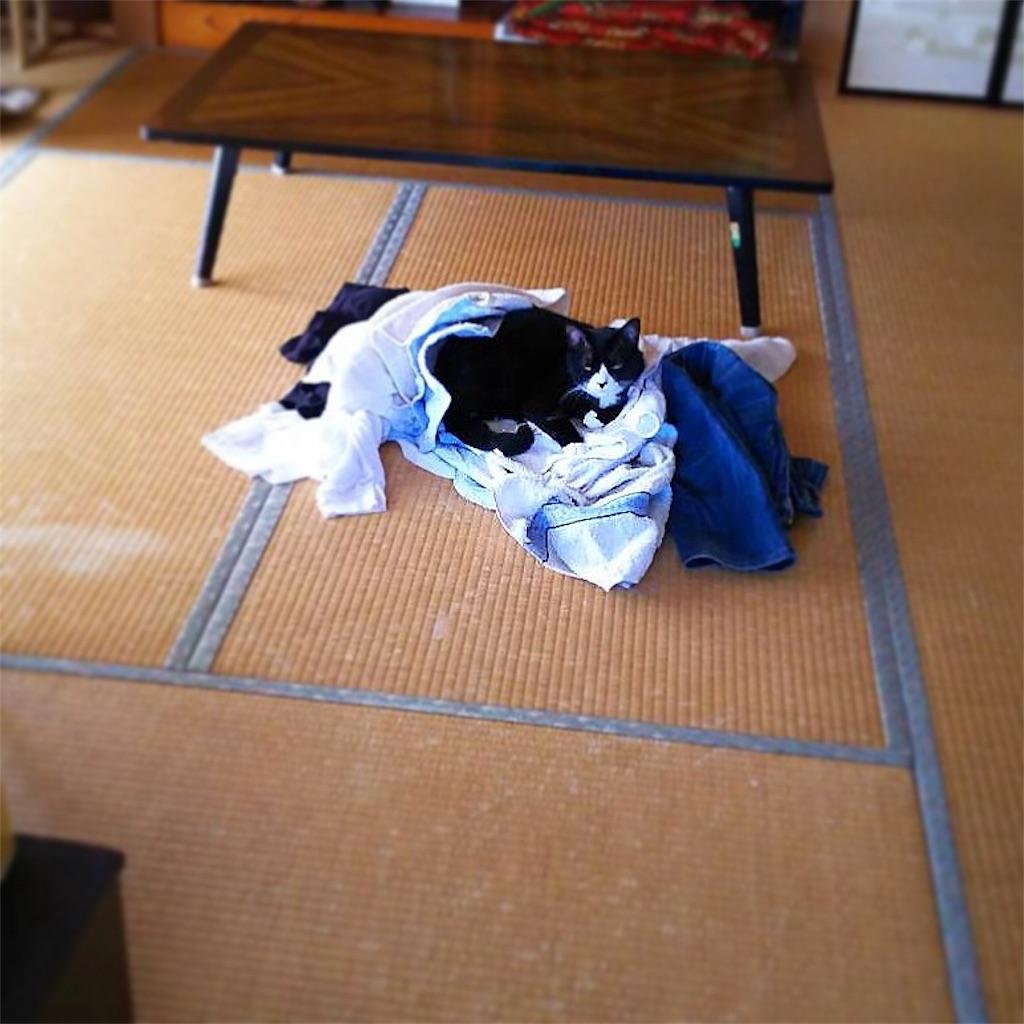 f:id:Fukuneko:20180819225446j:image