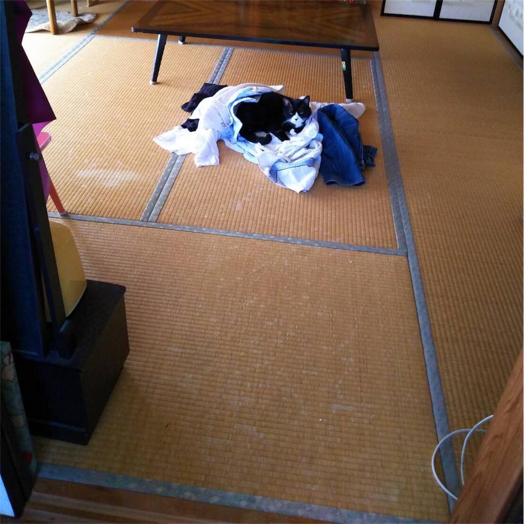 f:id:Fukuneko:20180819225451j:image