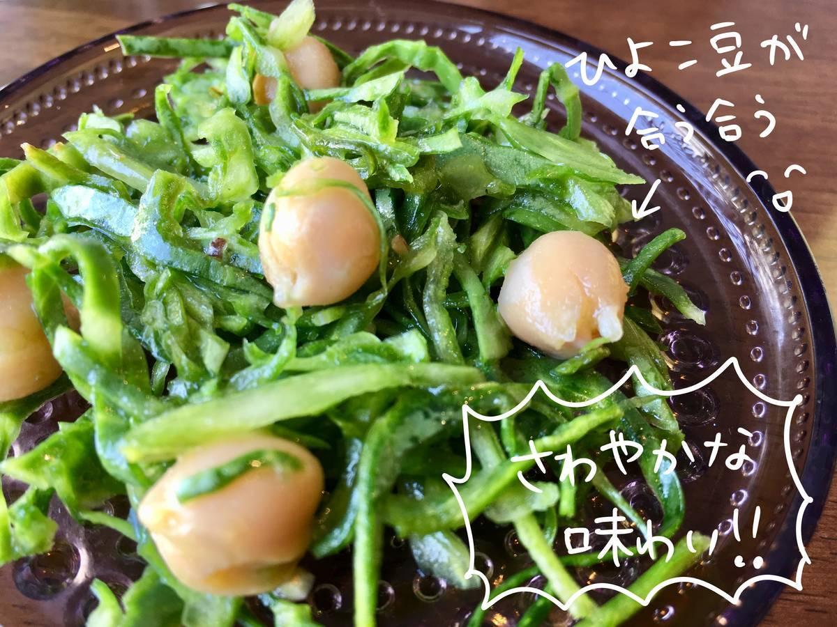 f:id:Fukuneko:20190406135442j:plain