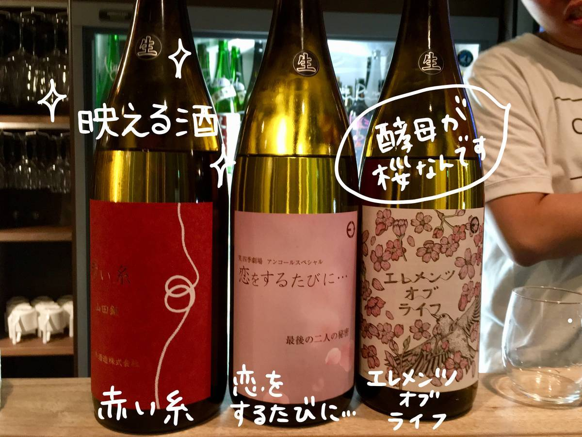 f:id:Fukuneko:20190412121020j:plain