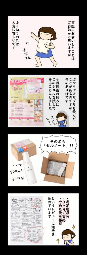 f:id:Fukuneko:20190417110531p:image