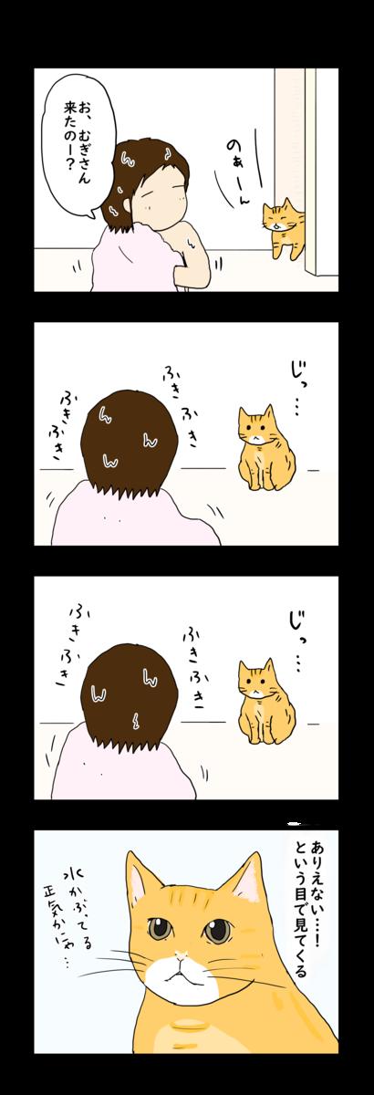 f:id:Fukuneko:20190426182406p:plain