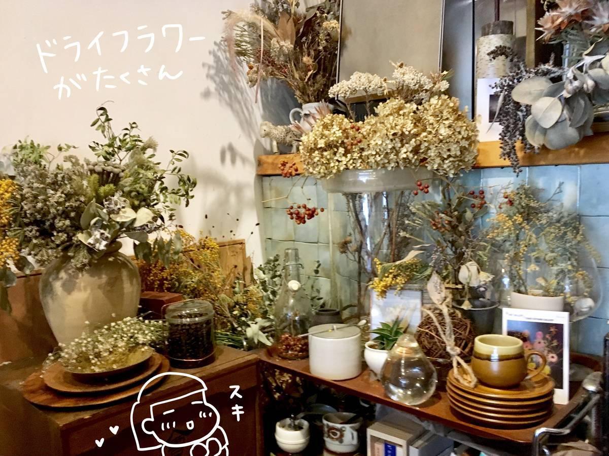 f:id:Fukuneko:20190531160608j:plain