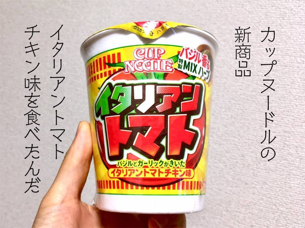 f:id:Fukuneko:20190616183051j:image