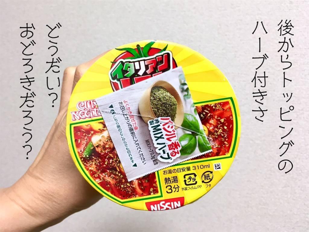 f:id:Fukuneko:20190616183100j:image