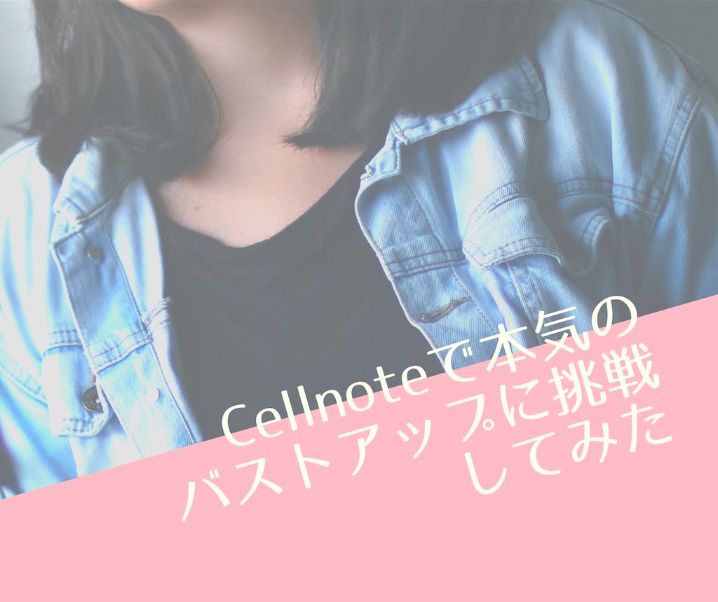 f:id:Fukuneko:20190620190101p:plain
