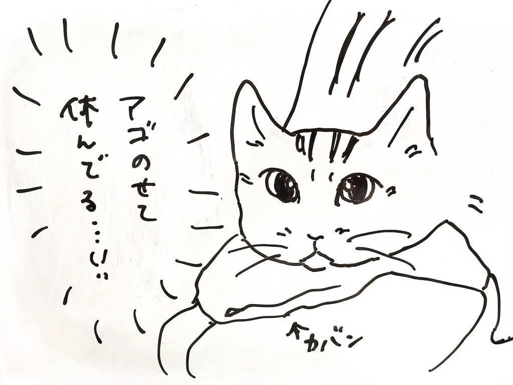 f:id:Fukuneko:20190718081435j:image