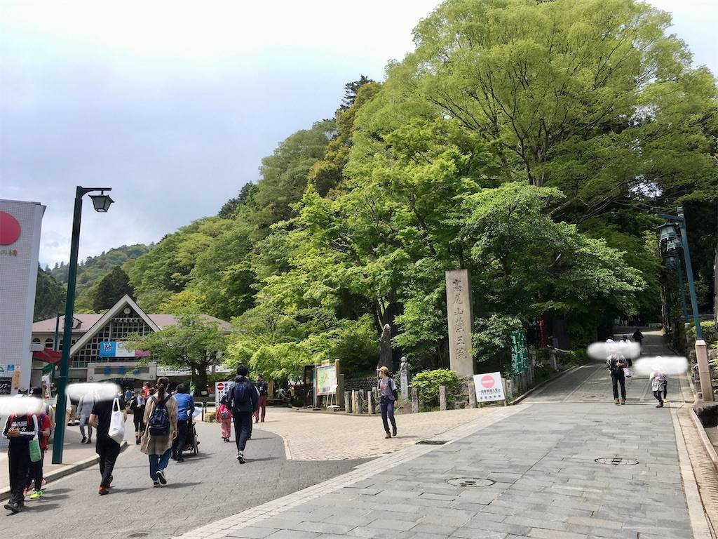 f:id:Fukuneko:20210502102330j:image