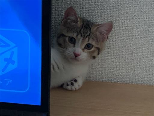 f:id:Furukawake:20210608120717j:image