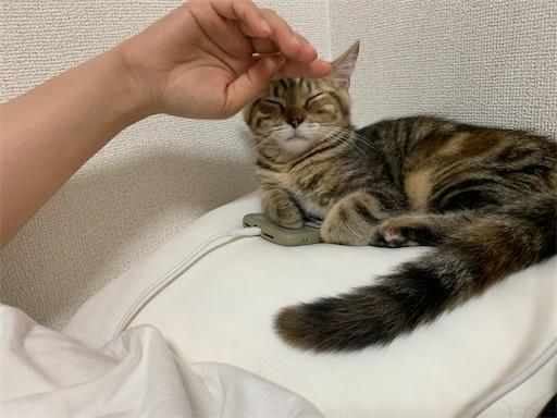 f:id:Furukawake:20210719184509j:image
