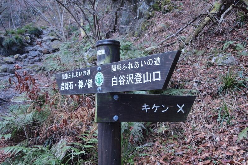 f:id:FutagawaNico:20190405221421j:plain