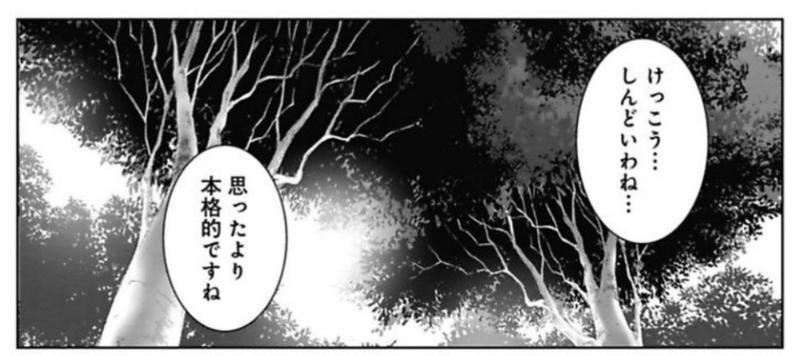 f:id:FutagawaNico:20190413223018j:plain