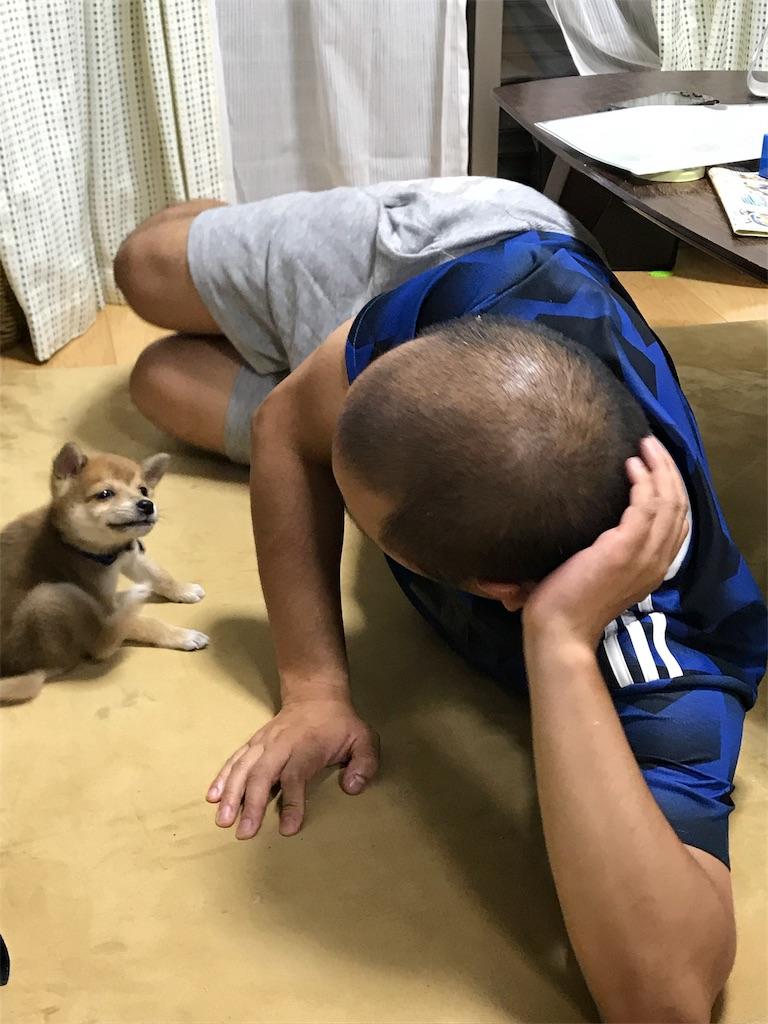 f:id:Futomenokachan:20181206104823j:image