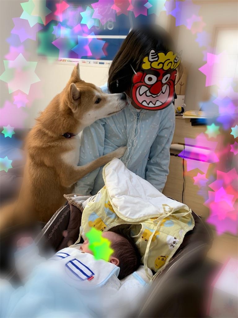 f:id:Futomenokachan:20190203223531j:image