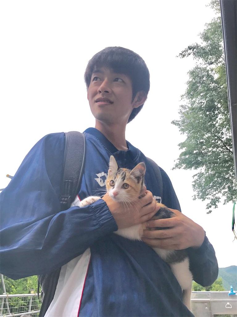 f:id:Fuyuchan:20170706220109j:image