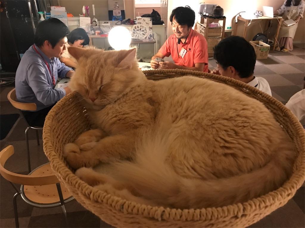 f:id:Fuyuchan:20170921001042j:image