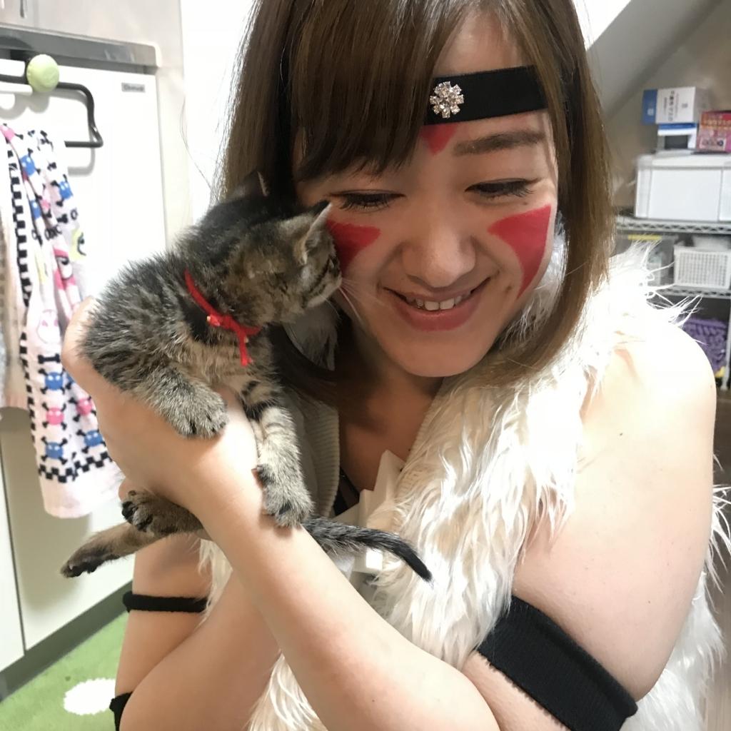 f:id:Fuyuchan:20171023210111j:plain