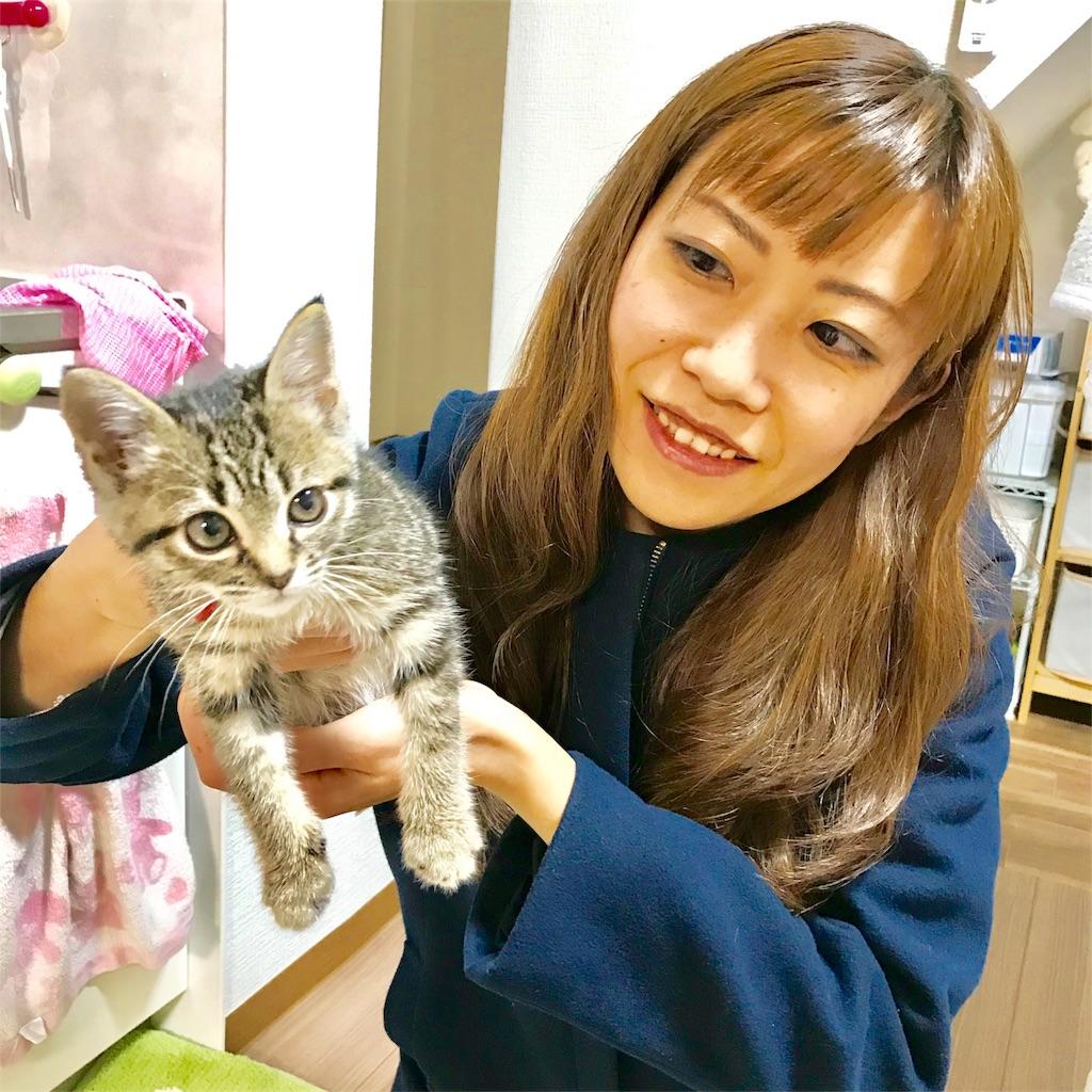 f:id:Fuyuchan:20171112190125j:image