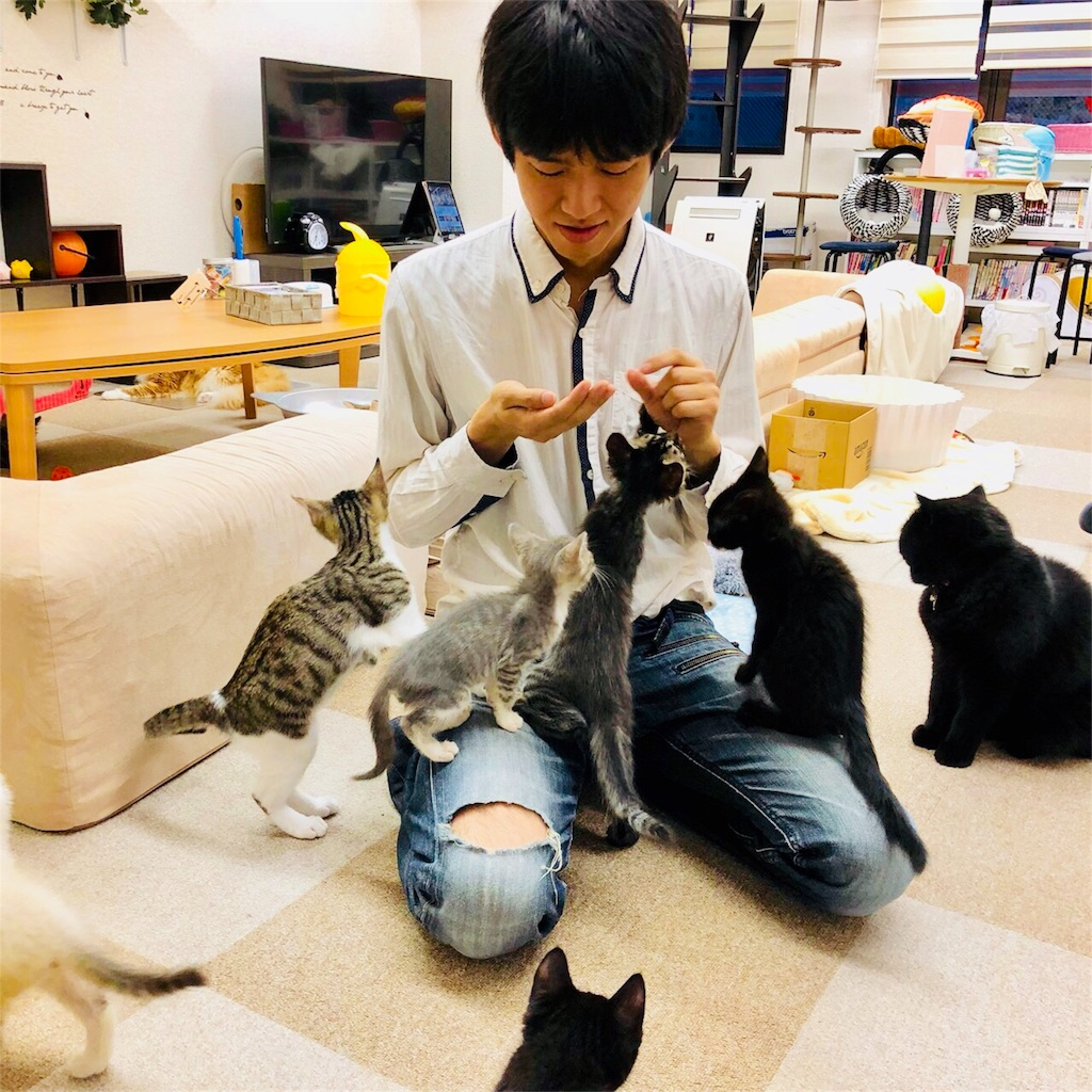 f:id:Fuyuchan:20180525181157j:image