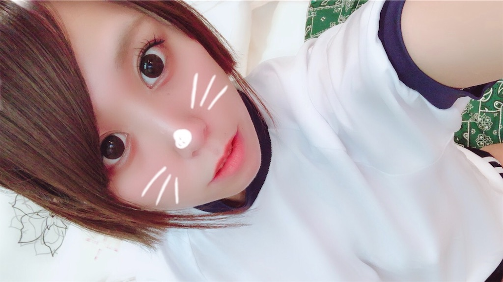 f:id:Fuyuchan:20181020144847j:image