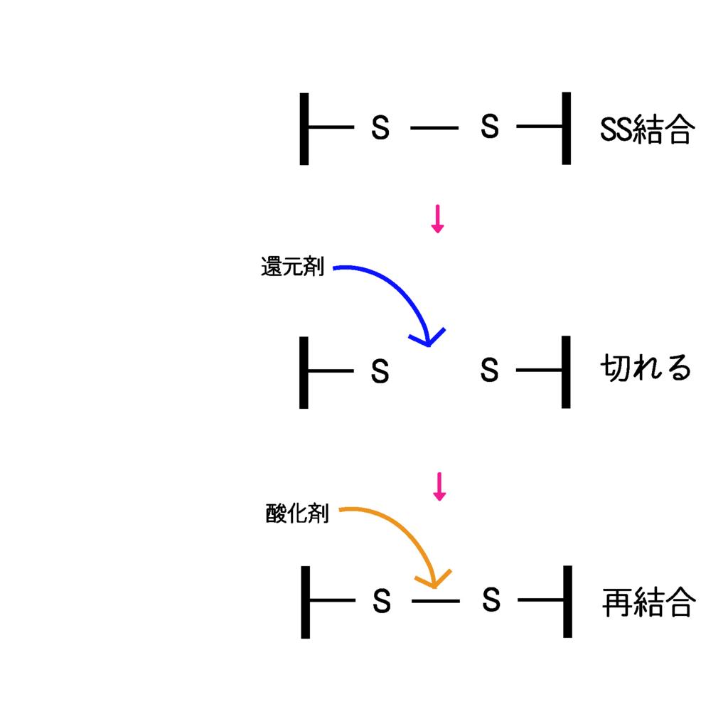 f:id:GOIS:20170311214023j:plain