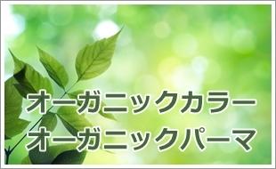 f:id:GOIS:20170414163728j:plain