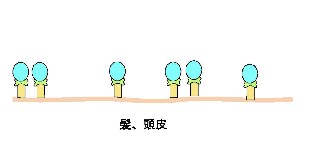 f:id:GOIS:20170524215756j:plain