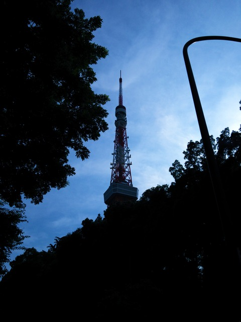 Tokyo Tower (5)