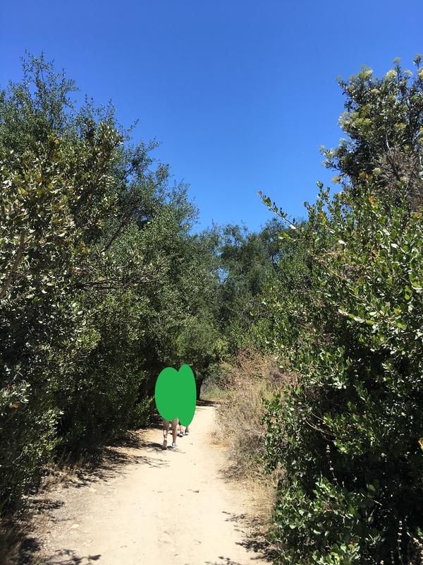 カリフォルニア アウトドア 絶景