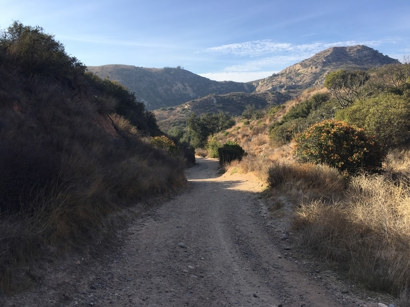 カリフォルニア マウンテンバイク 自然 絶景