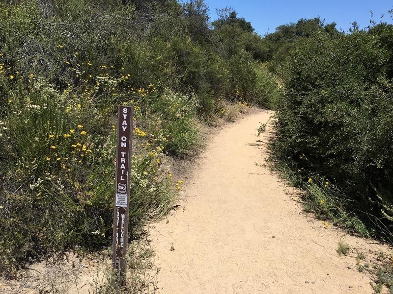 カリフォルニア 自然 アウトドア