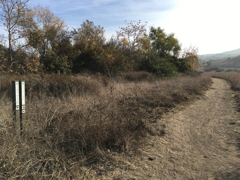 カリフォルニア アウトドア 自然