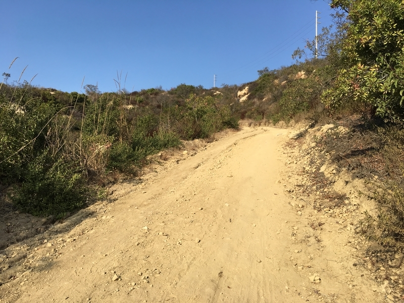カリフォルニア アウトドア 自然 絶景