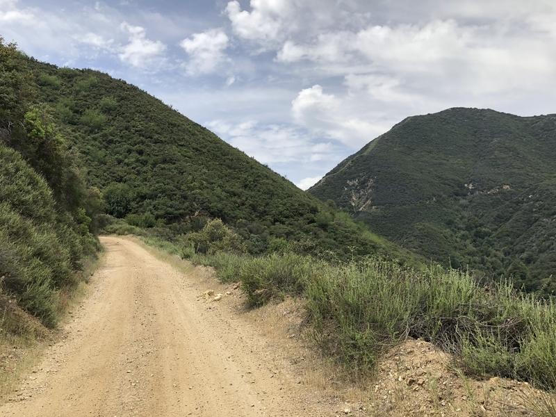 カリフォルニア モトクロス 林道 オフロード 自然