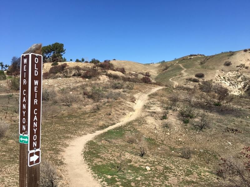 カリフォルニア アウトドア アナハイム 自然