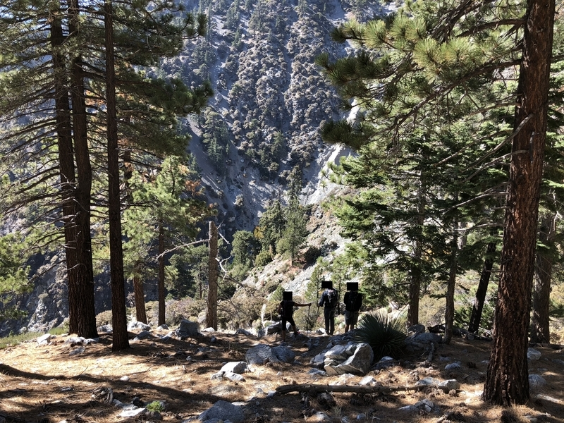 カリフォルニア トレッキング 自然 アウトドア