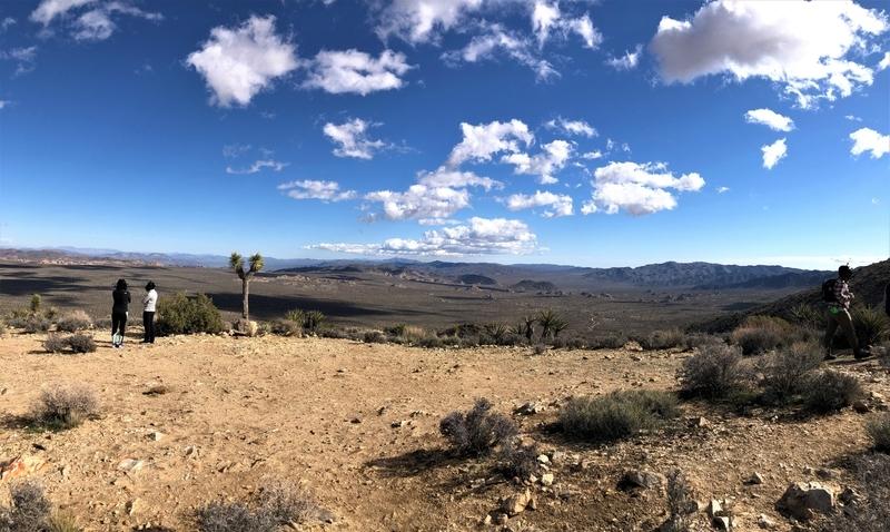 カリフォルニア ジョシュア・ツリー ライアンマウンテン トレッキング ハイキング アウトドア