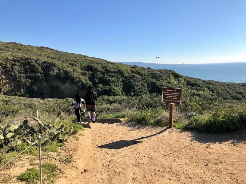 カリフォルニア サンディエゴ トーリーパインズ ビーチ トレッキング