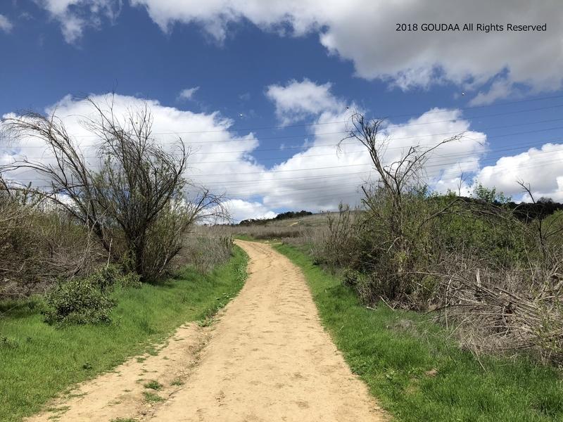 カリフォルニア アウトドア トレッキング ロサンゼルス パウダーキャニオン マウンテンバイク