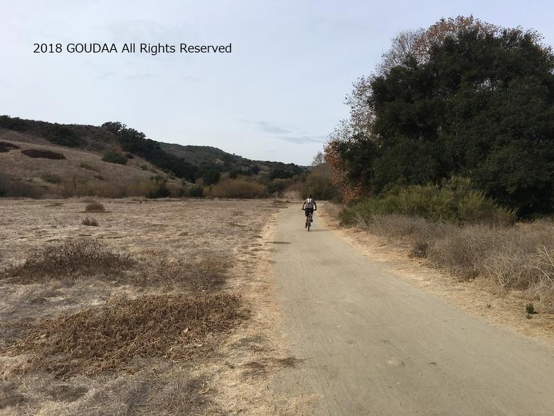 カリフォルニア マウンテンバイク アウトドア 公園 自然