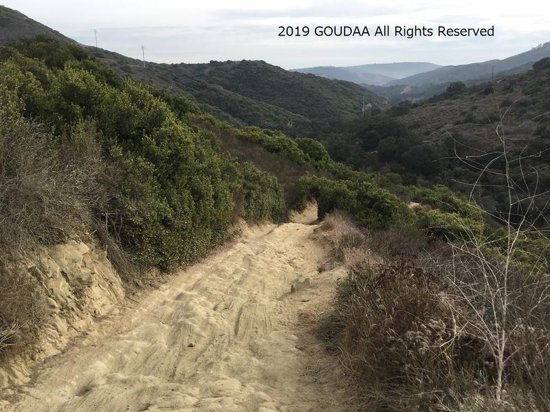 カリフォルニア アウトドア マウンテンバイク 自然 アリソウッズ トレイル
