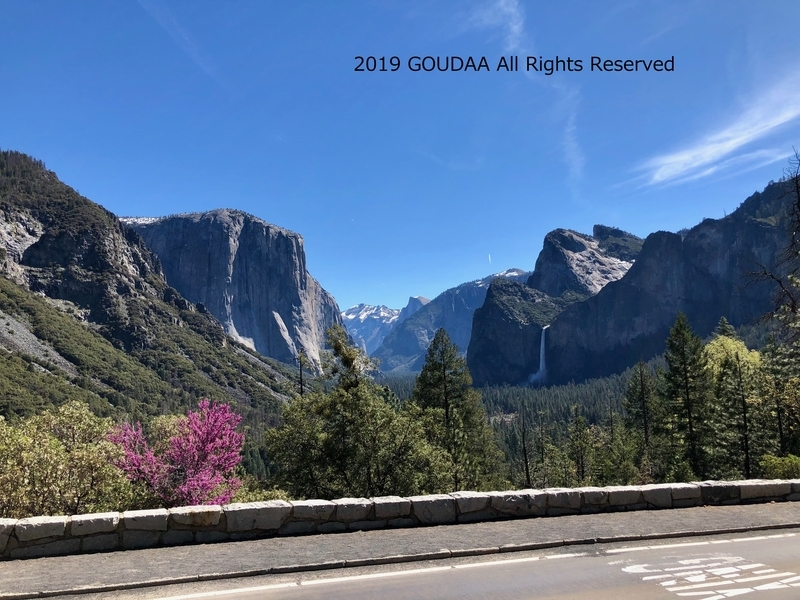 カリフォルニア ヨセミテ トンネルビュー トレッキング